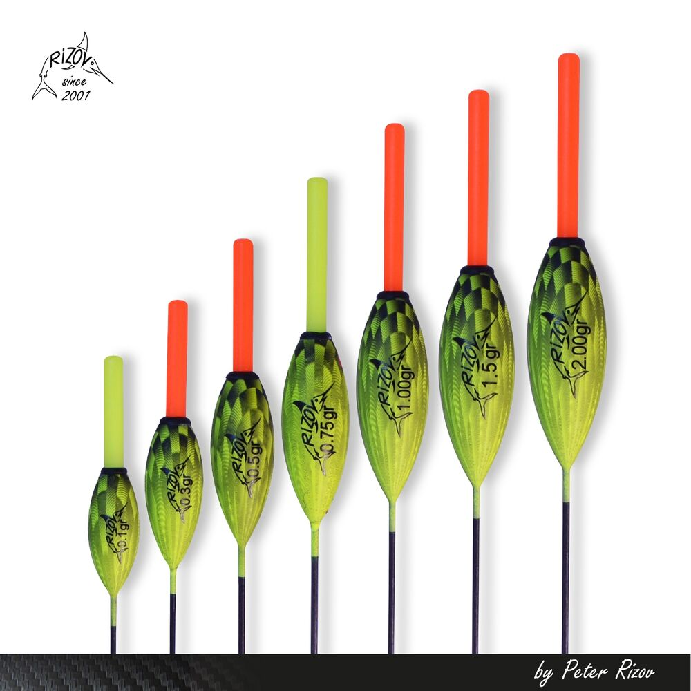Pole fishing float in line interchangeable tip ebay for Floating fishing line