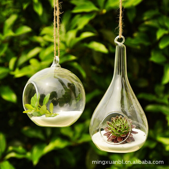 wall hang glass flower plant vase terrarium container home garden ball decor lc ebay. Black Bedroom Furniture Sets. Home Design Ideas