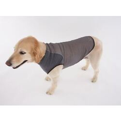 Insect Shield Repellent Dog Shirt by Doggles