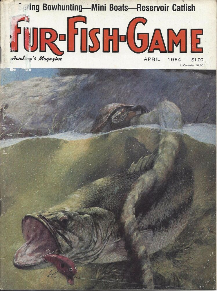 Fur fish game magazine april 1984 cover by george luther for Fur fish and game