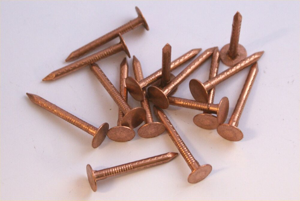 Copper Clout Slate Roofing Nails Or Tree Stump Killers