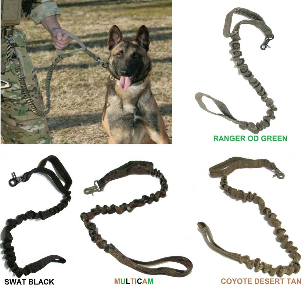 Free Dog Collars And Leashes