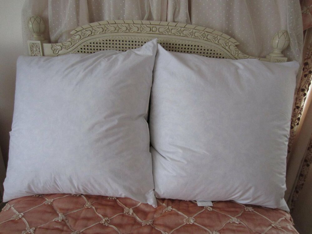 Bed of roses feather down euro square oblong pillow for Best down pillow inserts