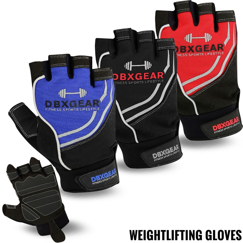 Reebok Strength Training Gloves Weight Lifting Fitness: Weight Lifting Body Building Gloves Training Fitness