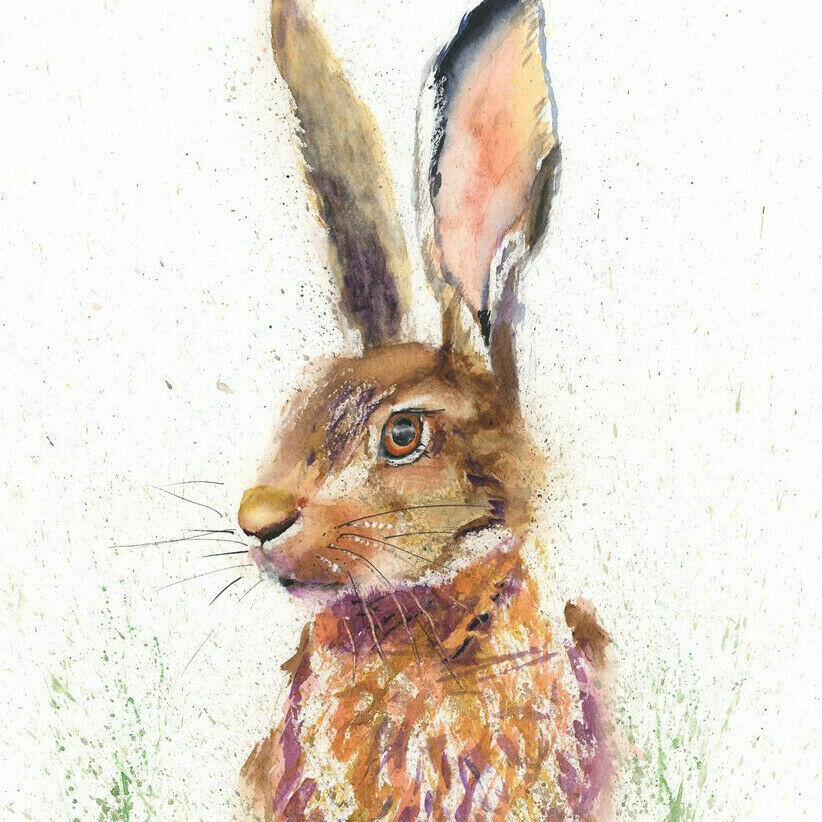 Helen Rose Limited Print Of My Hare Original Watercolour