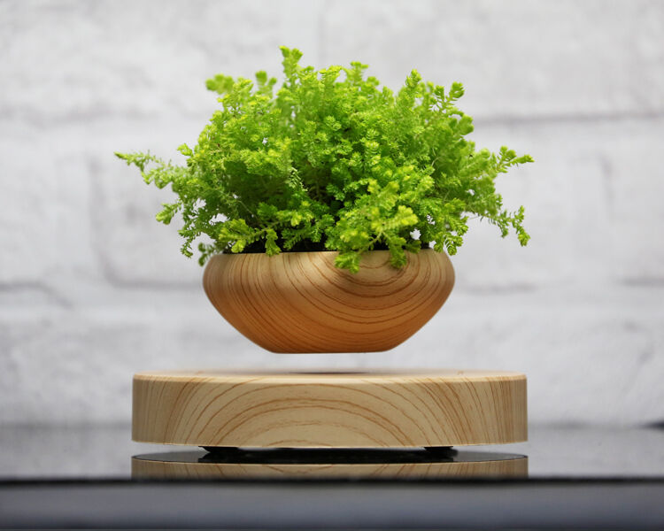 Creative gift magnetic levitation air bonsai suspension flower pot potted plant ebay - Pot de fleur levitation ...