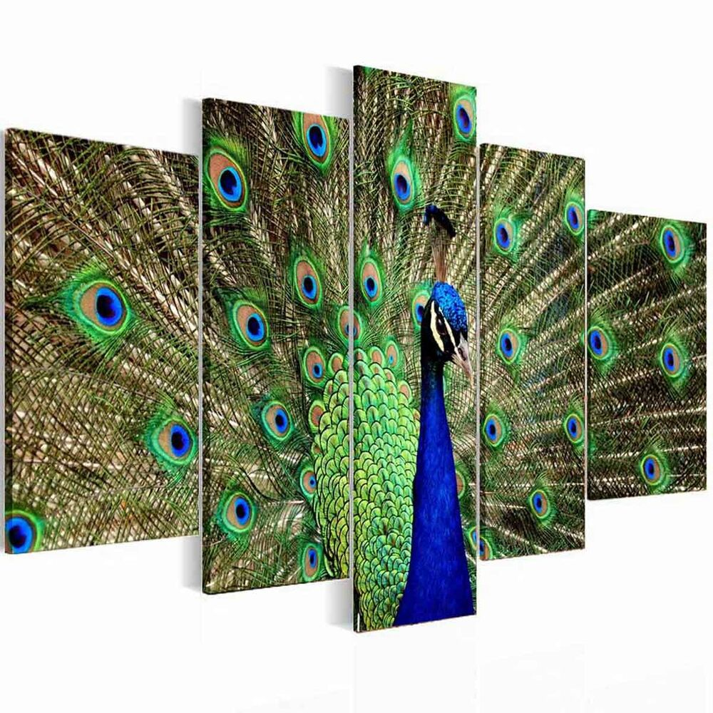 Framed 5panel Green Peacock Canvas Print Wall Art Pictures