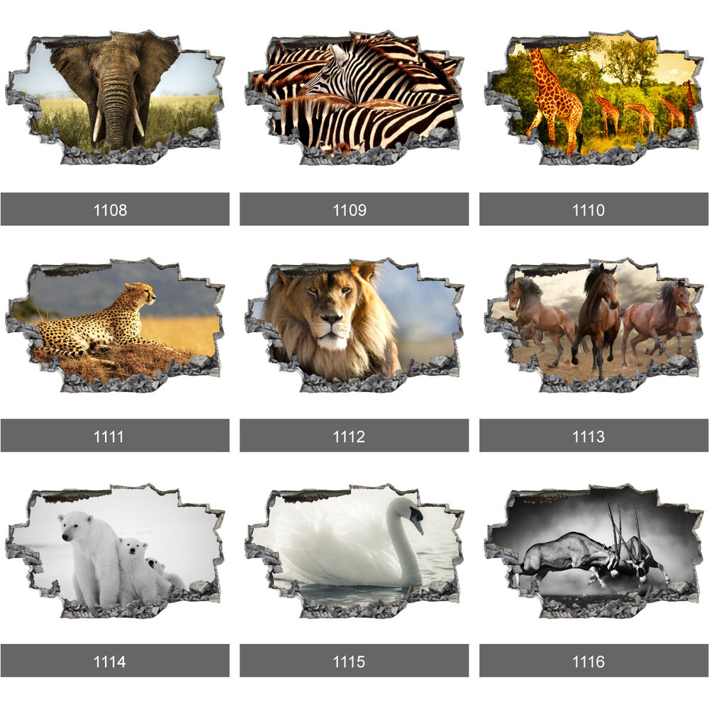 Africa animal safari wildlife nature 3d wall mural photo for Animal wall mural