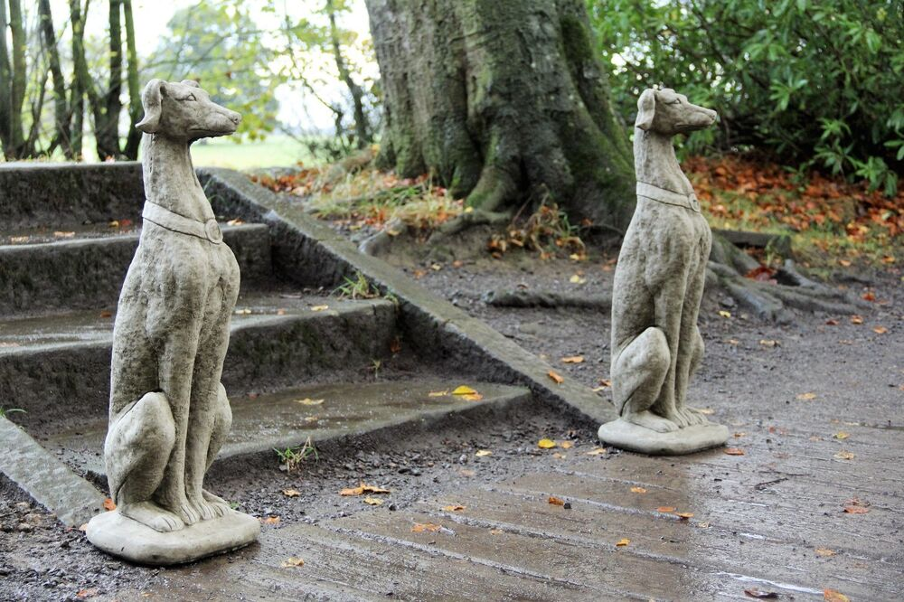 Pair Life Size Greyhounds Dogs Garden Ornament Statue Whippet Stone Cast Decor Ebay