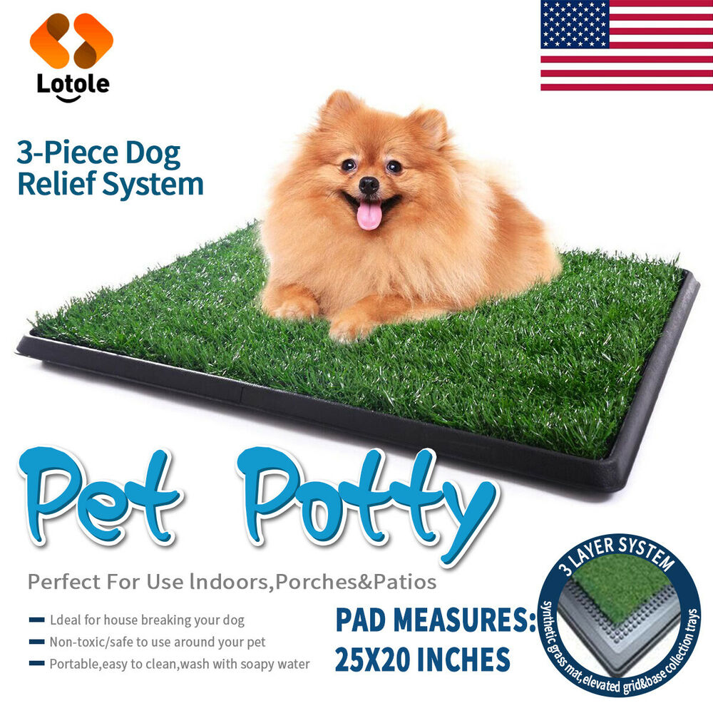 My Dog Peed On My New Rug: Pet Potty Trainer Grass Mat Dog Puppy Training Pee Patch
