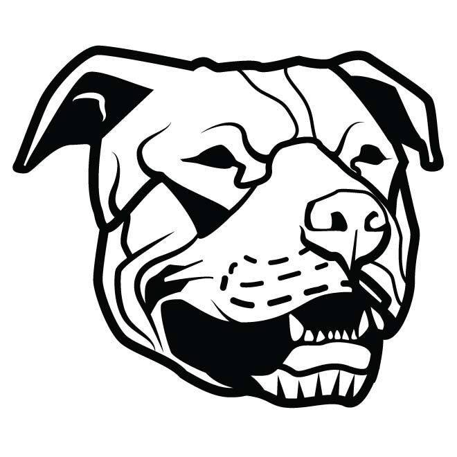 Staffordshire Bull Terrier Dog Faceanimals Dogs Car Decal Sticker