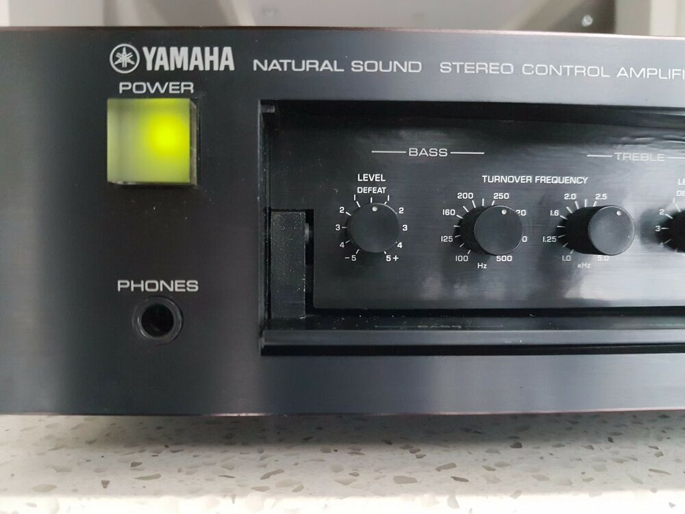 Yamaha Natural Sound Amplifier M