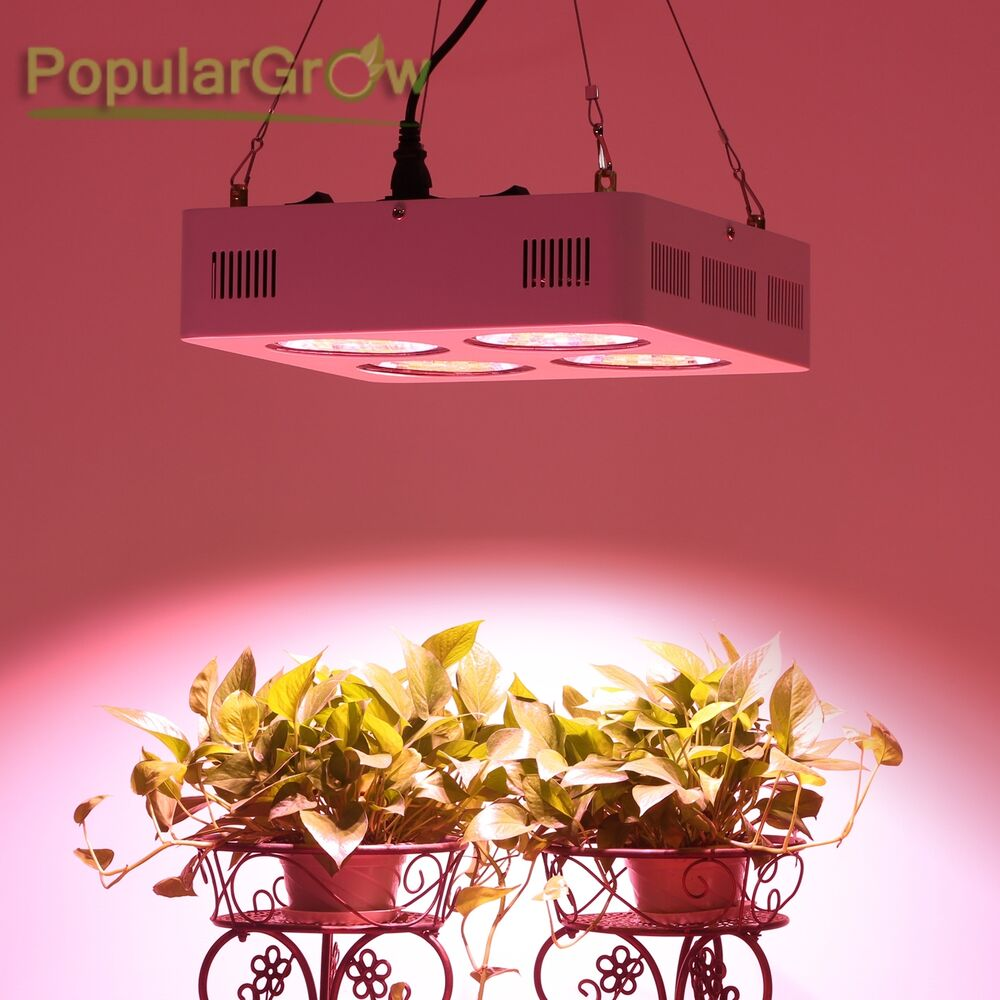 populargrow 800w led pflanzen lampe vollspektrum wachsen licht cob grow light 710154963105 ebay. Black Bedroom Furniture Sets. Home Design Ideas
