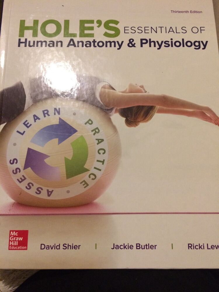 Holes Essentials Of Human Anatomy And Physiology By Jackie Butler