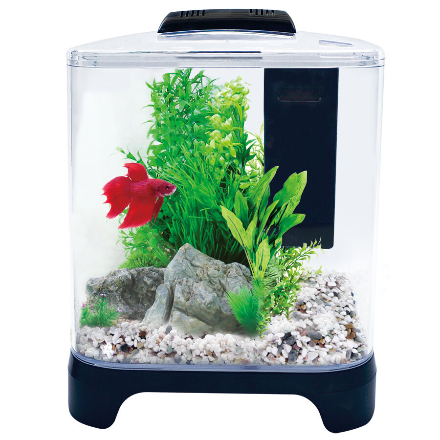 Aqua one pico fish tank aquarium fighter betta tank inc for Acrylic vs glass fish tank