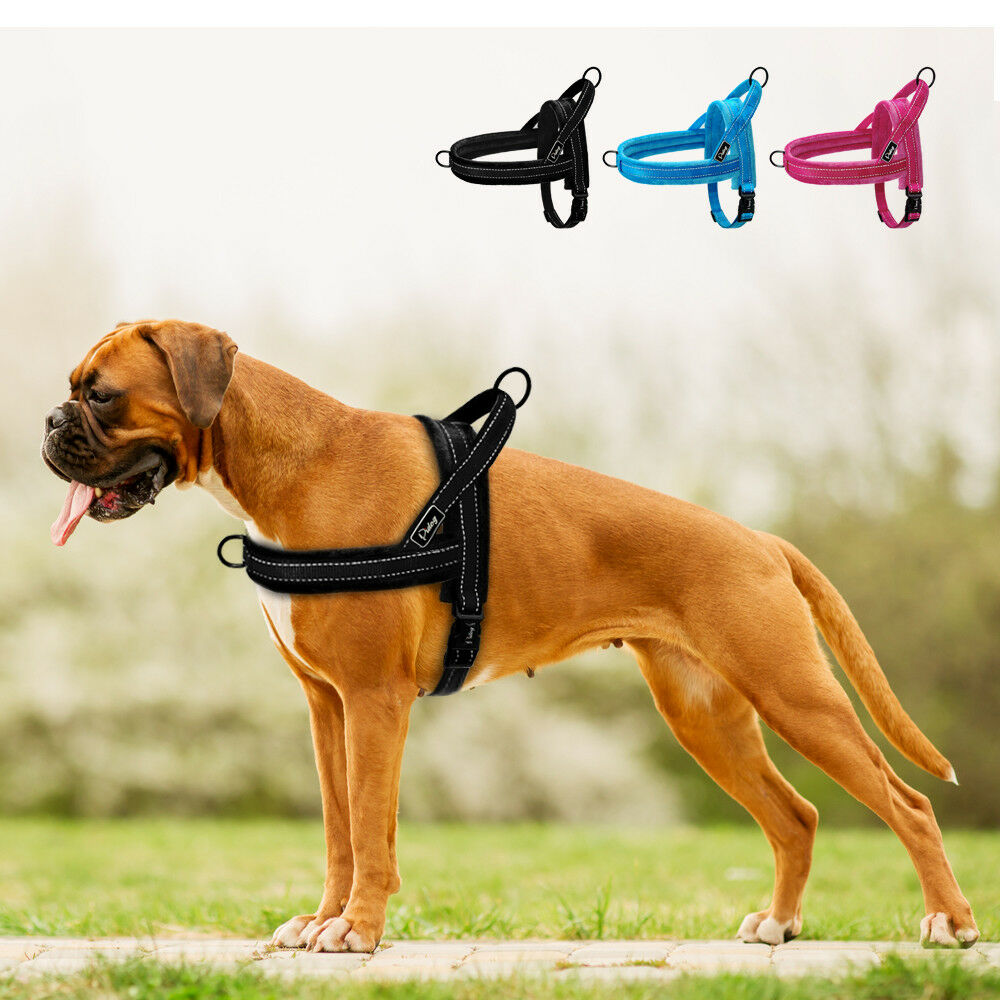 no pull front clip dog harness reflective plush padded pet vest quick fit s l ebay. Black Bedroom Furniture Sets. Home Design Ideas