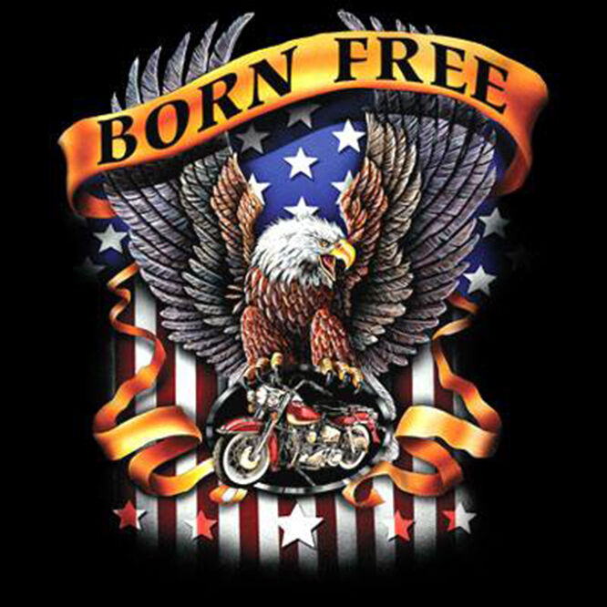6a67abdd7e299 Details about Born Free Patriotic American Freedom Eagle USA Motorcycle  Biker T-Shirt Tee