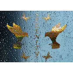 NEW! Serenity Doves Shower Screen Sticker Bathroom Decal - Choice of Colours