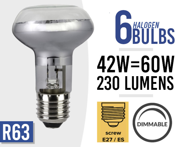 6x Eco Dimmable Halogen Screw Fit Spot Light Bulb R63 E27 /ES 42w=60watt