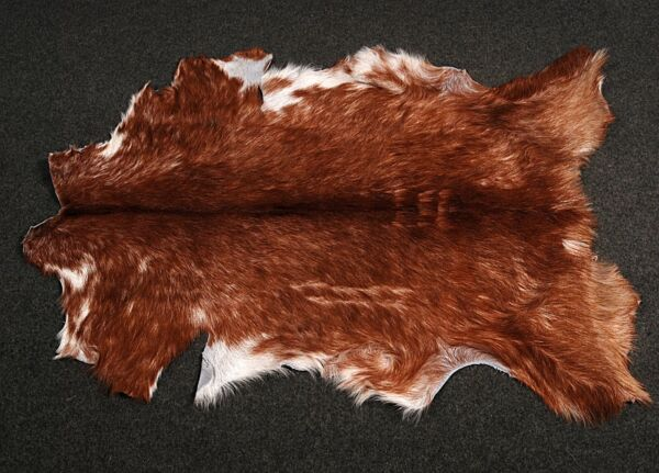 Royaume-UniNew Goat hide Rug Hair on Area Rug Size 34