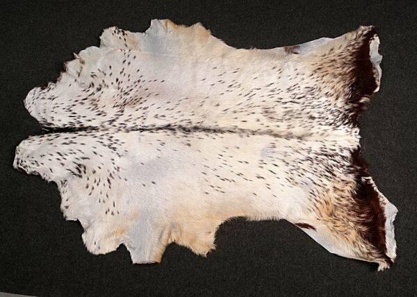 Royaume-UniNew Goat hide Rug Hair on Area Rug Size 48