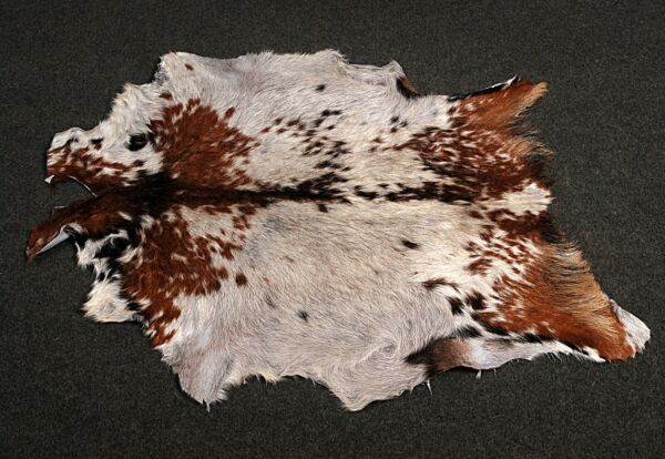 Royaume-UniNew Goat hide Rug Hair on Area Rug Size 32