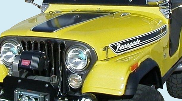Jeep Decal Kit 1972 73 Jeep Renegade Ebay
