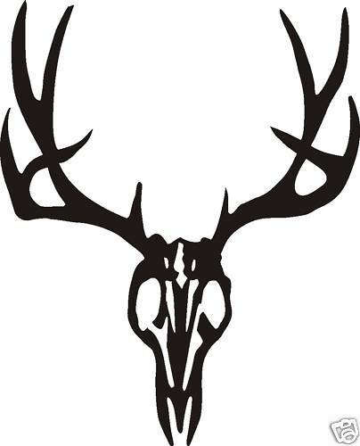 Where Can I Buy Antlers For My Car