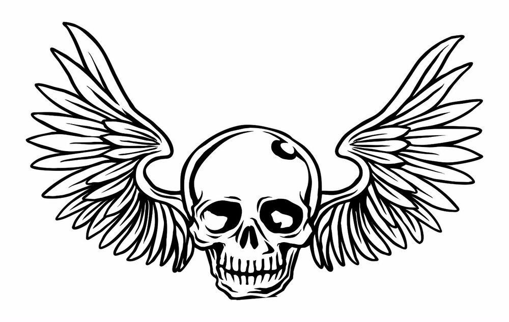 skull with wings sticker for motorcycle gas tank car