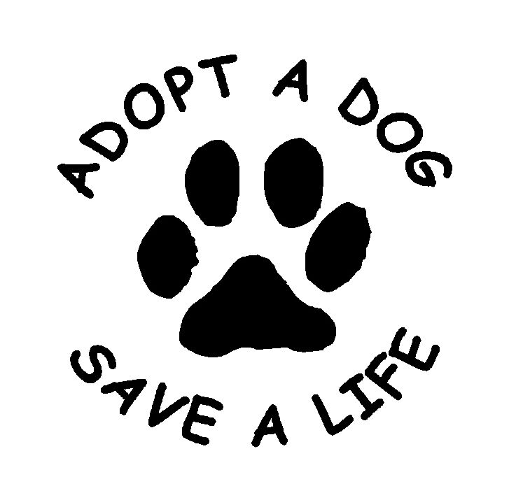 Is It Free To Adopt A Dog From A Shelter