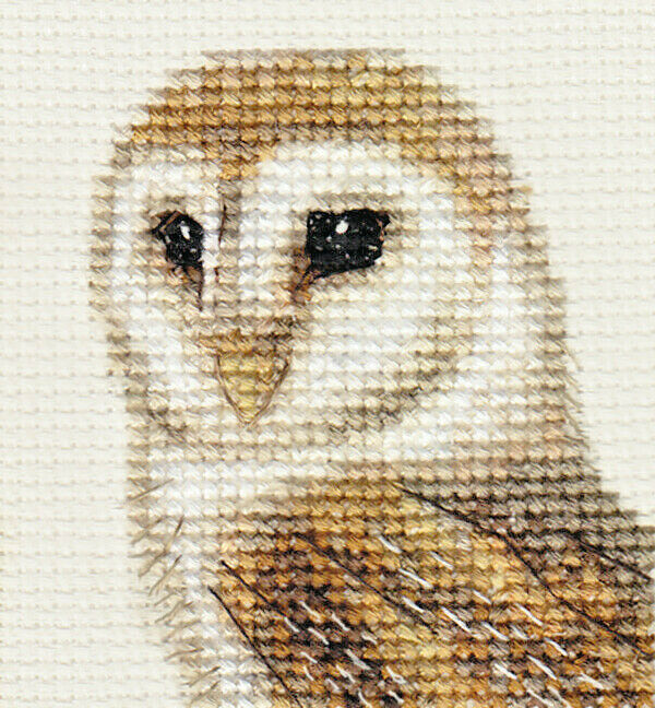 BARN OWL ~ Bird, Complete Counted Cross Stitch Kit