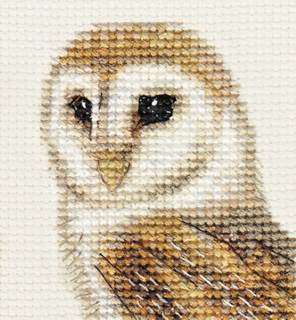 Barn owl bird complete counted cross stitch kit ebay for Complete barn home kits
