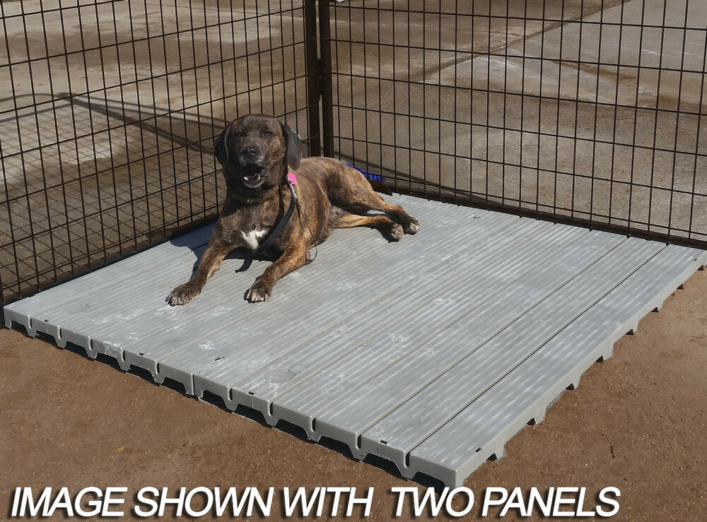 Dog Kennels For Home Use