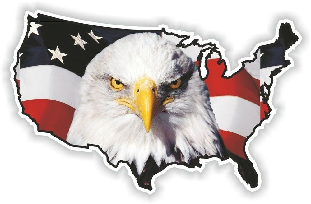 Looks - States United flag with eagle video