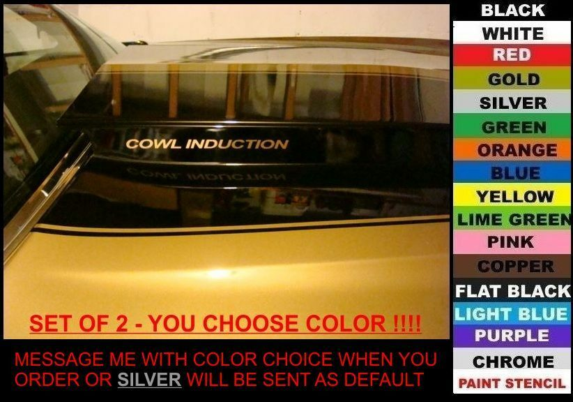 Cowl Induction Hood Decals Set Of 2 Any Color Chevy