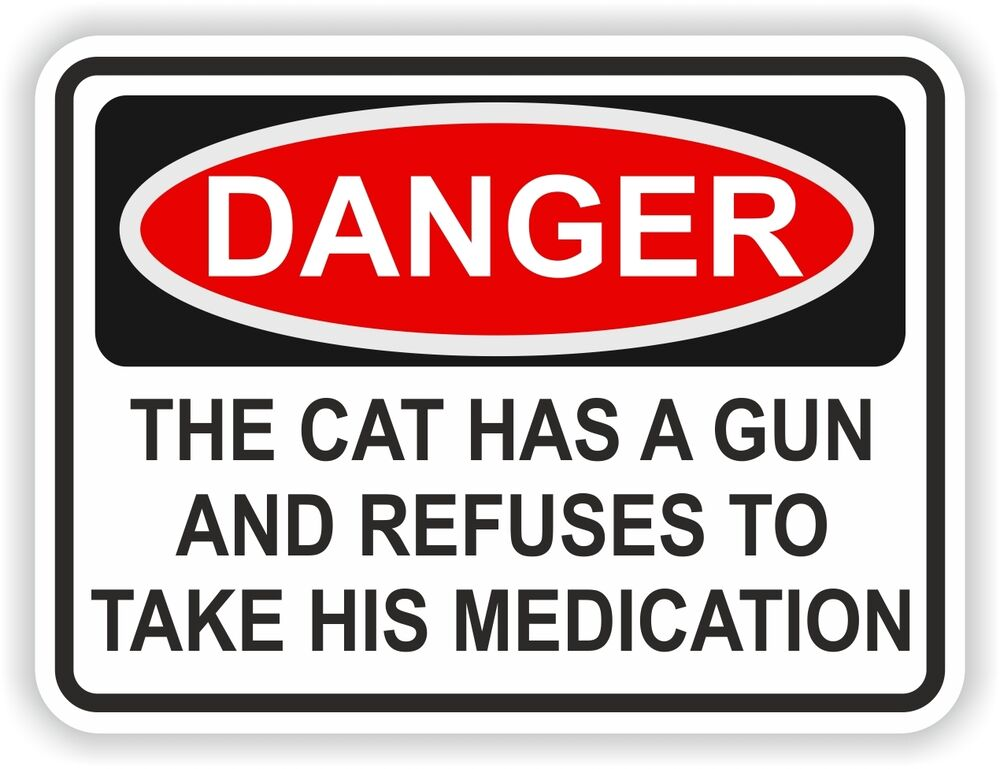 1x Danger The Cat Has A Gun And He Refuses Medication