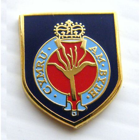 img-THE WELSH GUARDS ARMY MILITARY LAPEL PIN BADGE FREE GIFT POUCH MOD APPROVED
