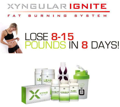 Xyngular IGNITE Weight Lose Kit, Lose Weight In Just 8