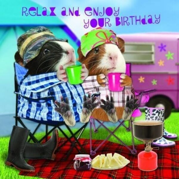 Funny Guinea Pig Birthday Card Happy Campers Camping ...