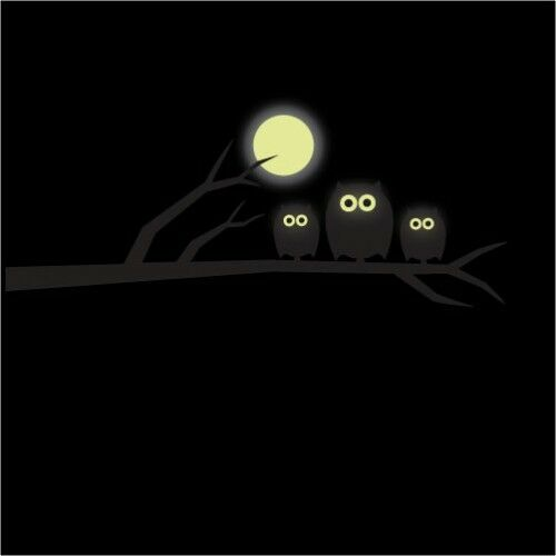 glow in the dark owl and moon vinyl wall stickers, wall decals, wall