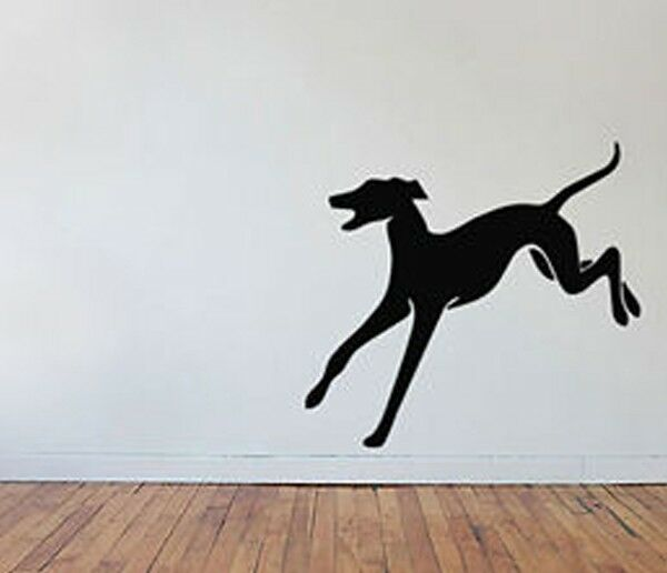 Show Dog Breed Greyhound Running Leap Vinyl Wall