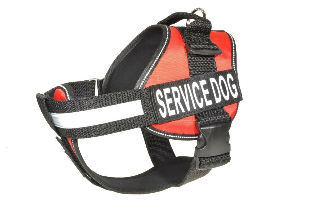 Service Dog Outfitters