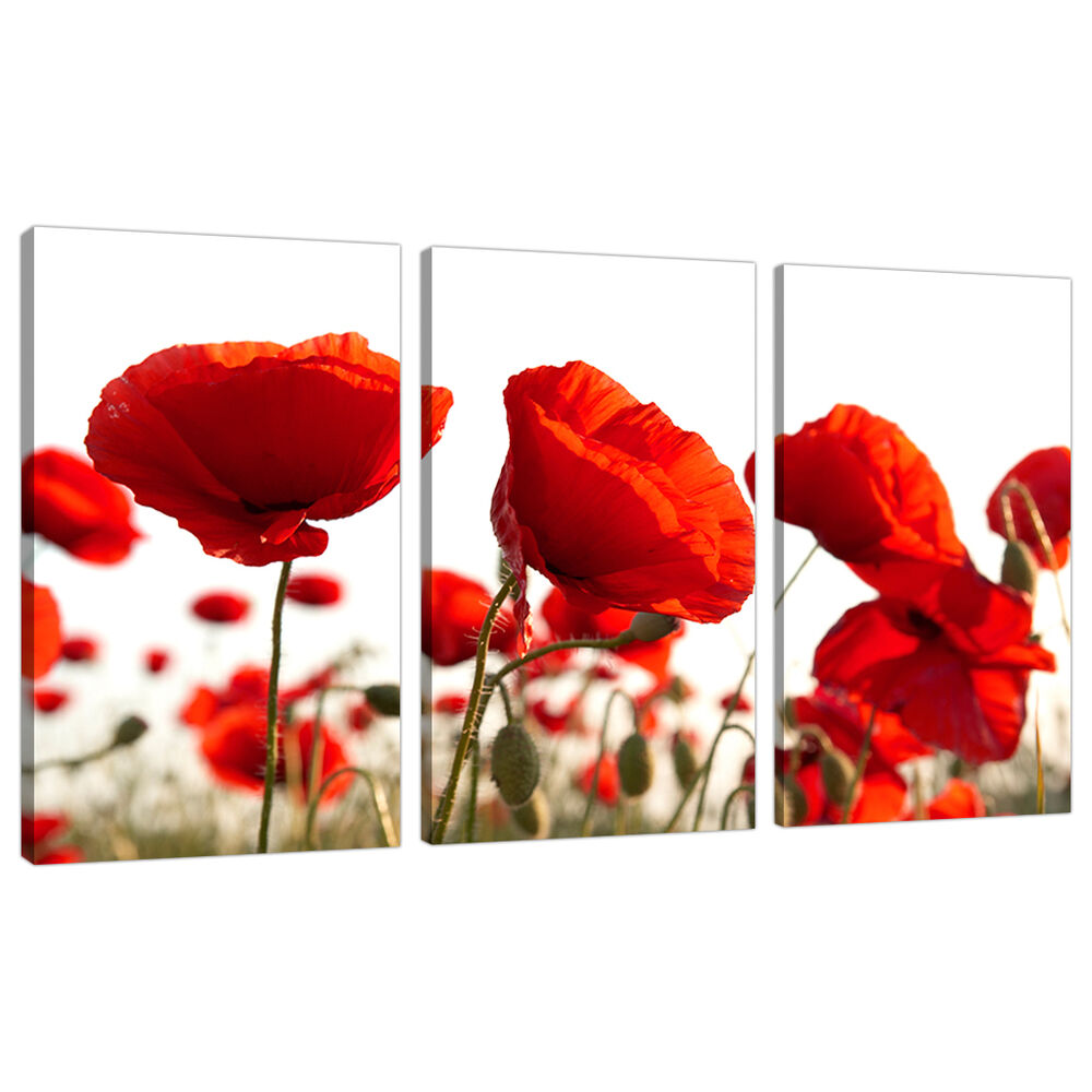 Set Of Three Red Poppy Canvas Prints Pictures Wall Art