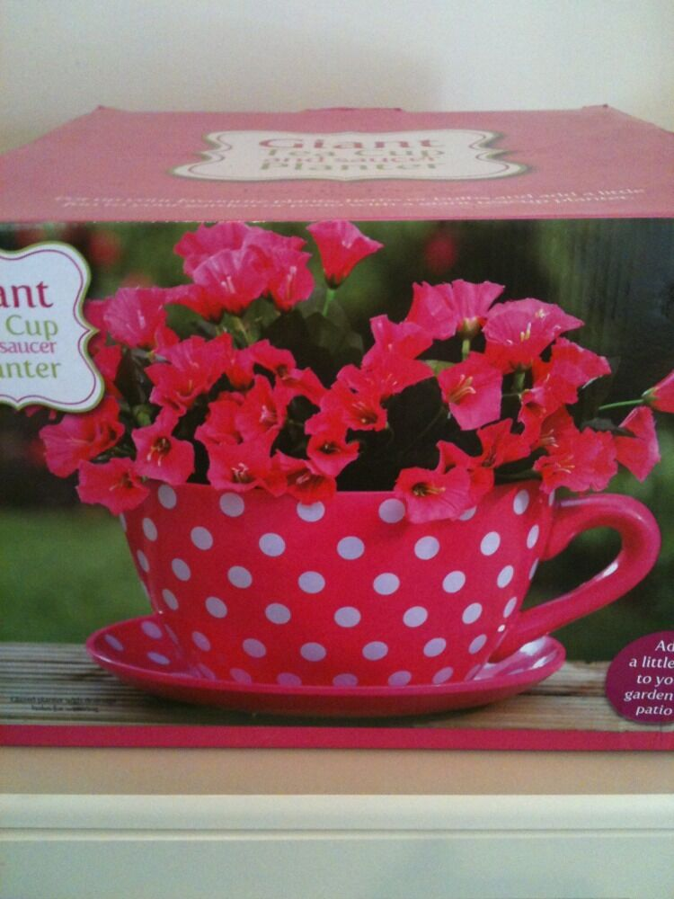 Giant Tea Cup And Saucer Garden Planter Flower Pot Pink Spots Ebay