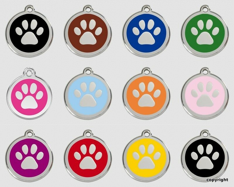 Red Dingo Dog Tag Uk