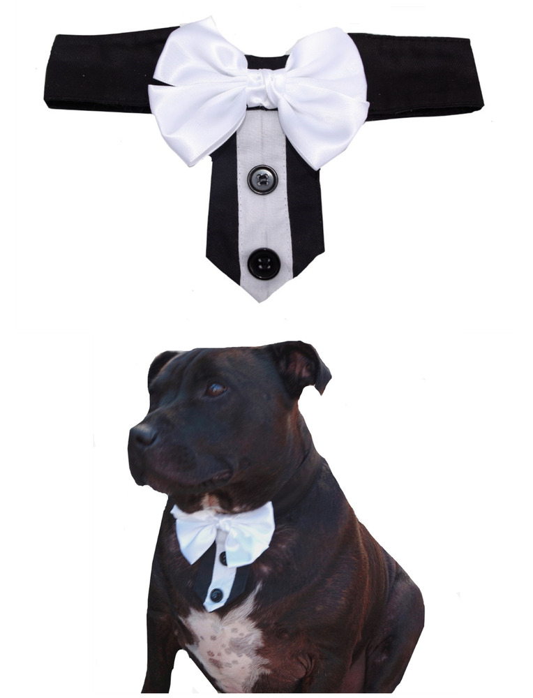 Tuxedo Bow Tie Collar For A Large Dog