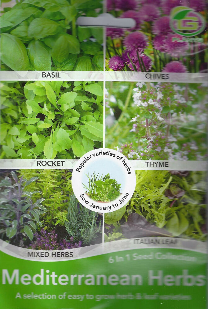 Grow Your Own Herbs 6 In One Mixed Variety Pack Garden