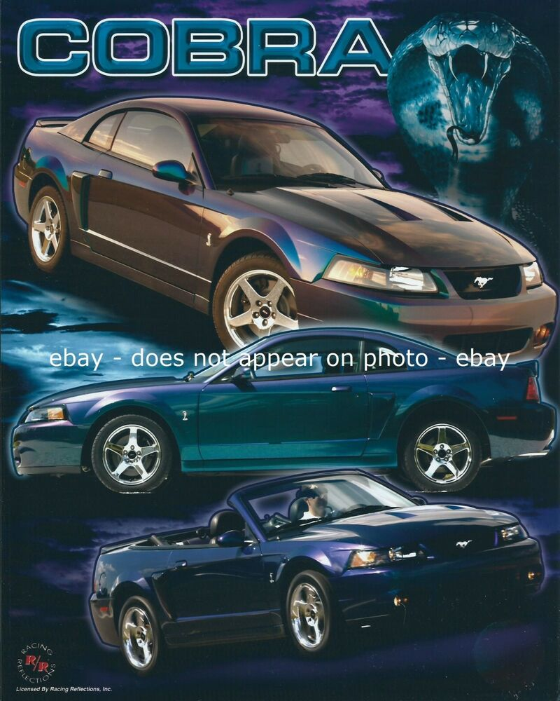 Ford Motor Company Mustang Cobra Pony Sports Car Coupe Convertible 8 X 10 Photo Ebay