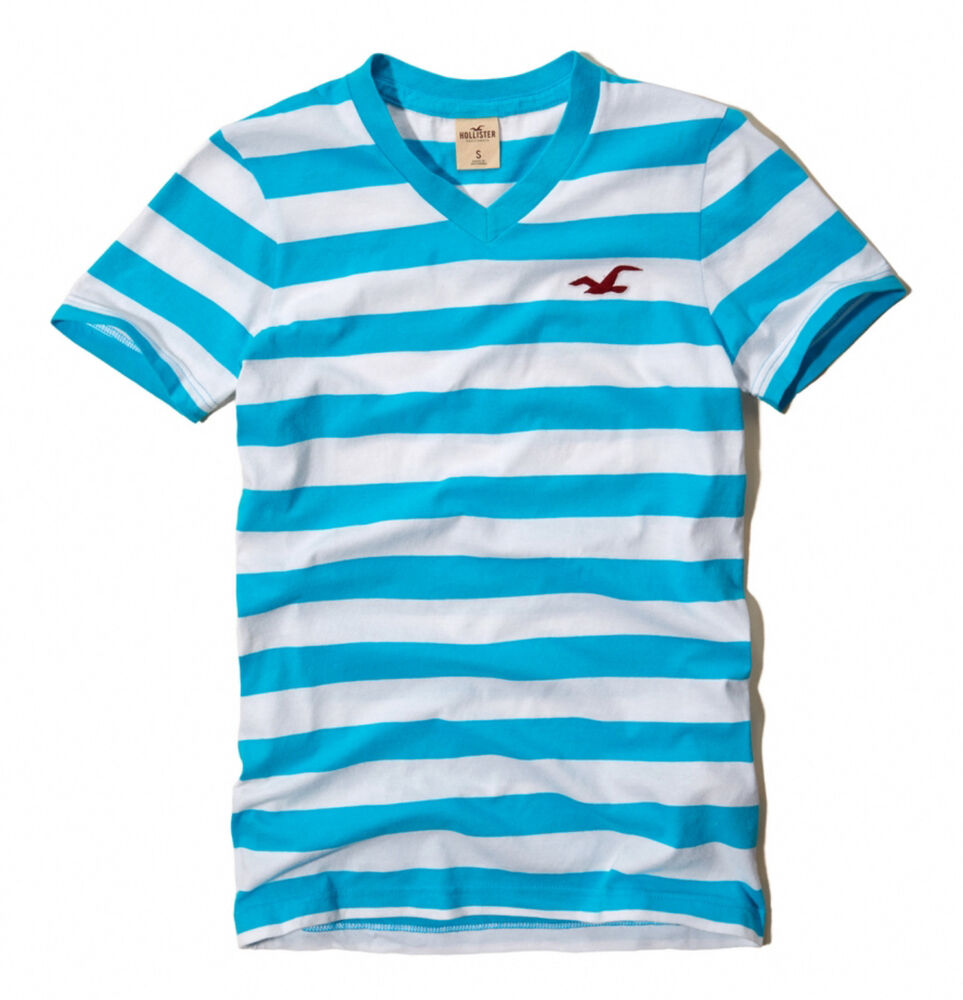Hollister by Abercrombie Men Swami's Beach Seagull V-Neck ...