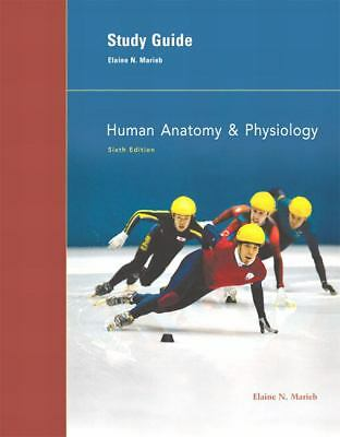 human physiology and anatomy write up This module will introduce students to the normal human anatomy and physiology of the digestive, nervous and neuromuscular body systems practical write-up three separate exercises spread over the semester relating to the module content these will comprise data analysis, presentation and interpretation which are.